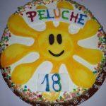 peluche1