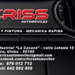 CRIS 3