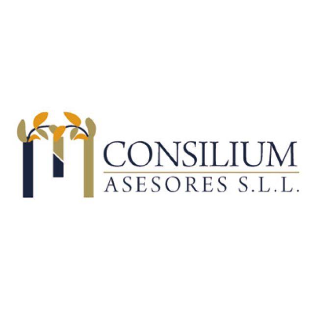 MN Consilium Asesores